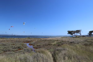 Punta Trettu Kite Center & Cafè Maps: kite zones in Punta Trettu where to kitesurf